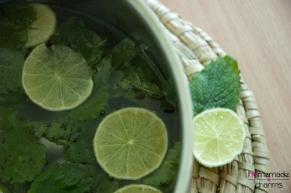 Melisse-Limette-Sirup_seitlich
