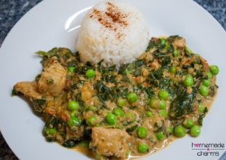 Spinat-Hühnchen-Curry-angerichtet_frontal