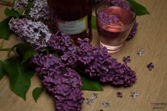Flieder-Sirup_Blüten