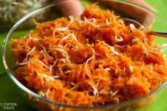 karotten-sprossen-salat_angerichtet