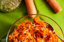 karotten-sprossen-salat_auszug