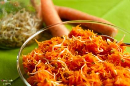 karotten-sprossen-salat_uebersicht